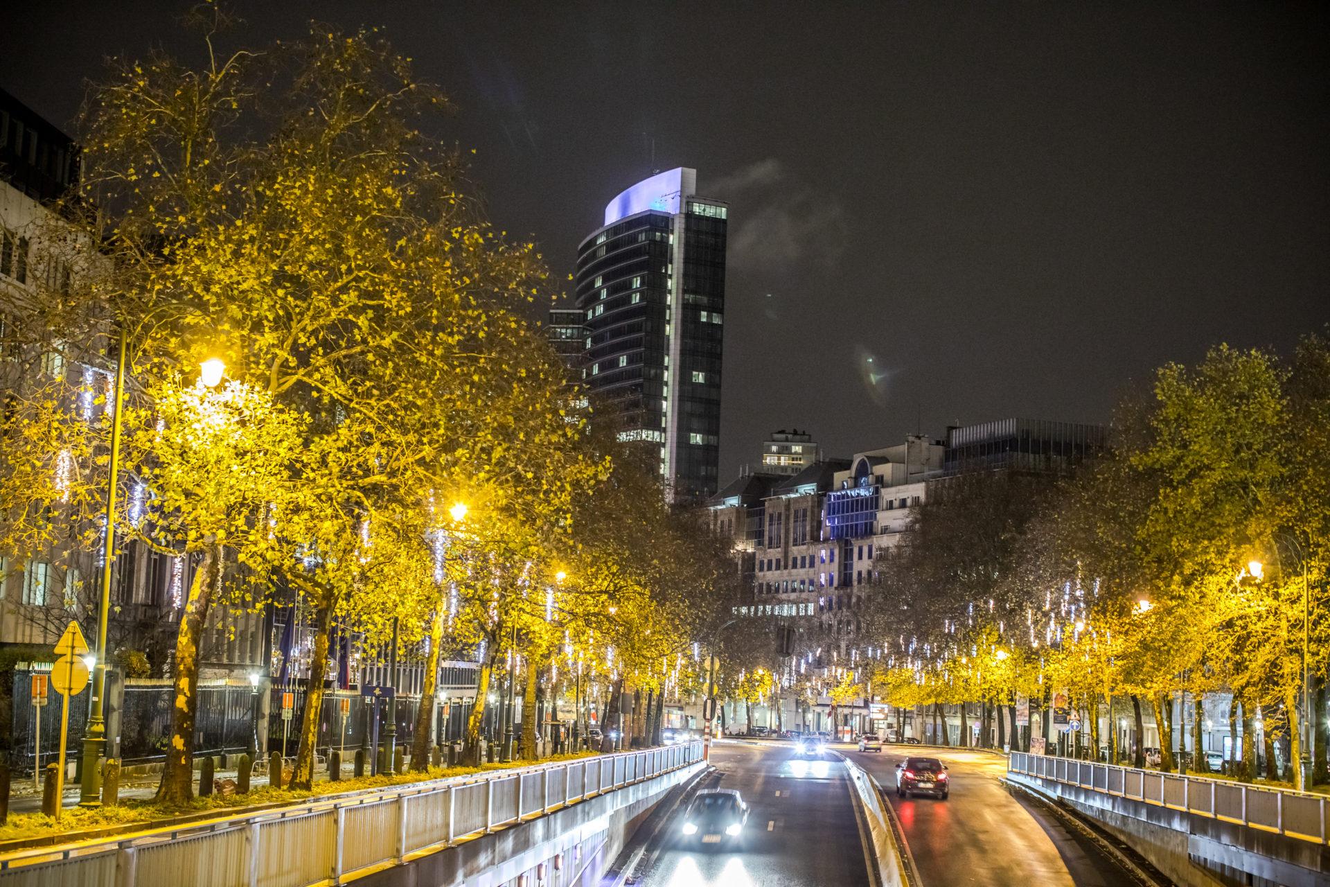 Illuminations de fin d'année Eindejaarsverlichting 3
