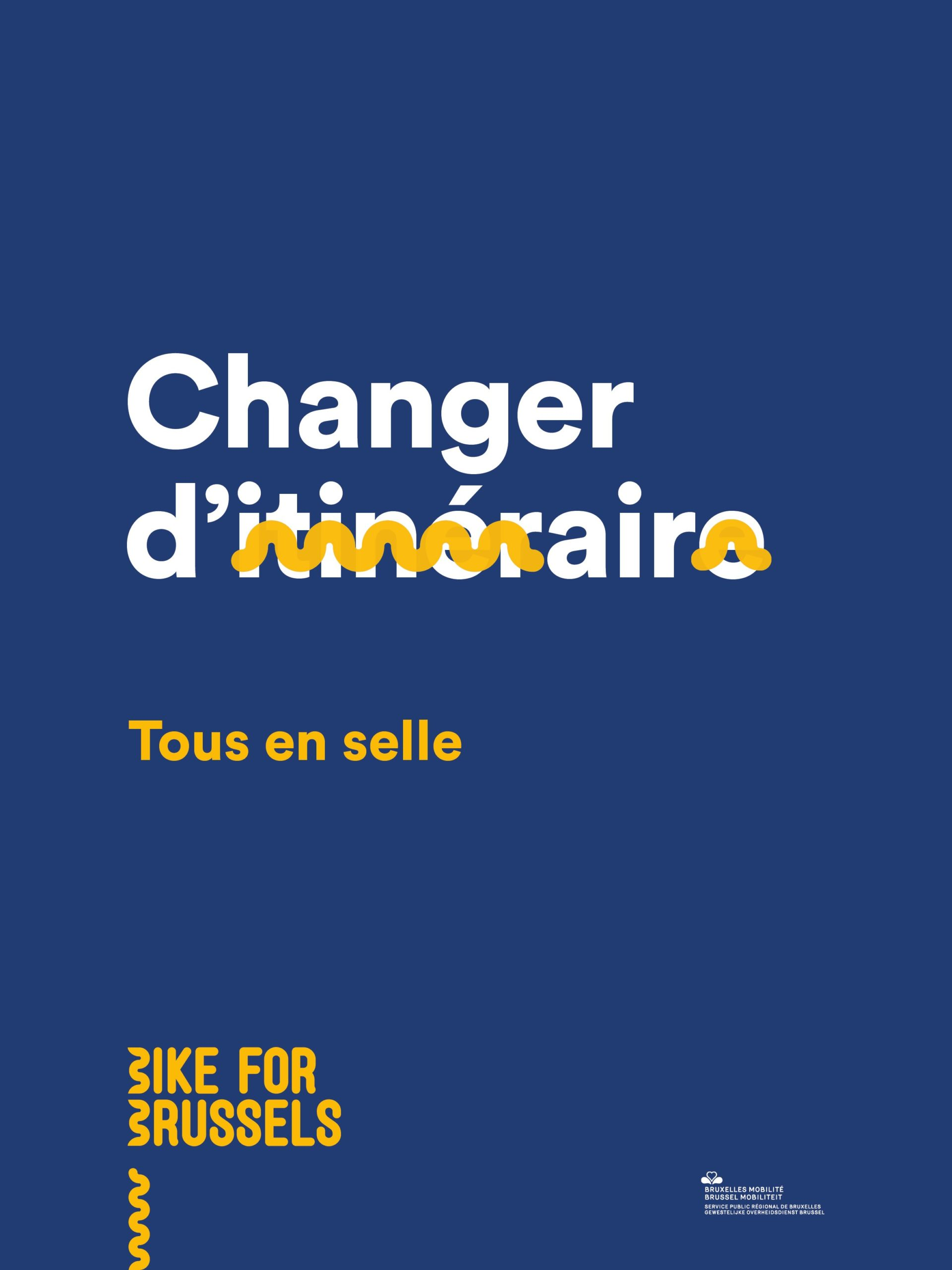 Bike For Brussels 12