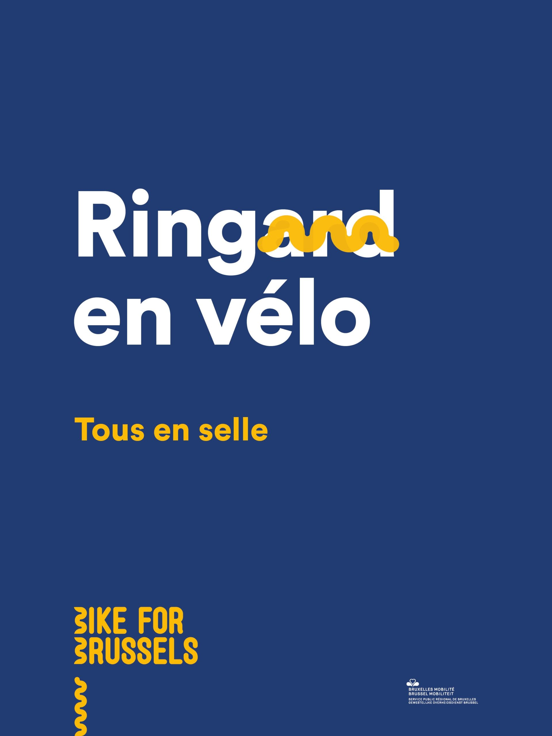 Bike For Brussels 10