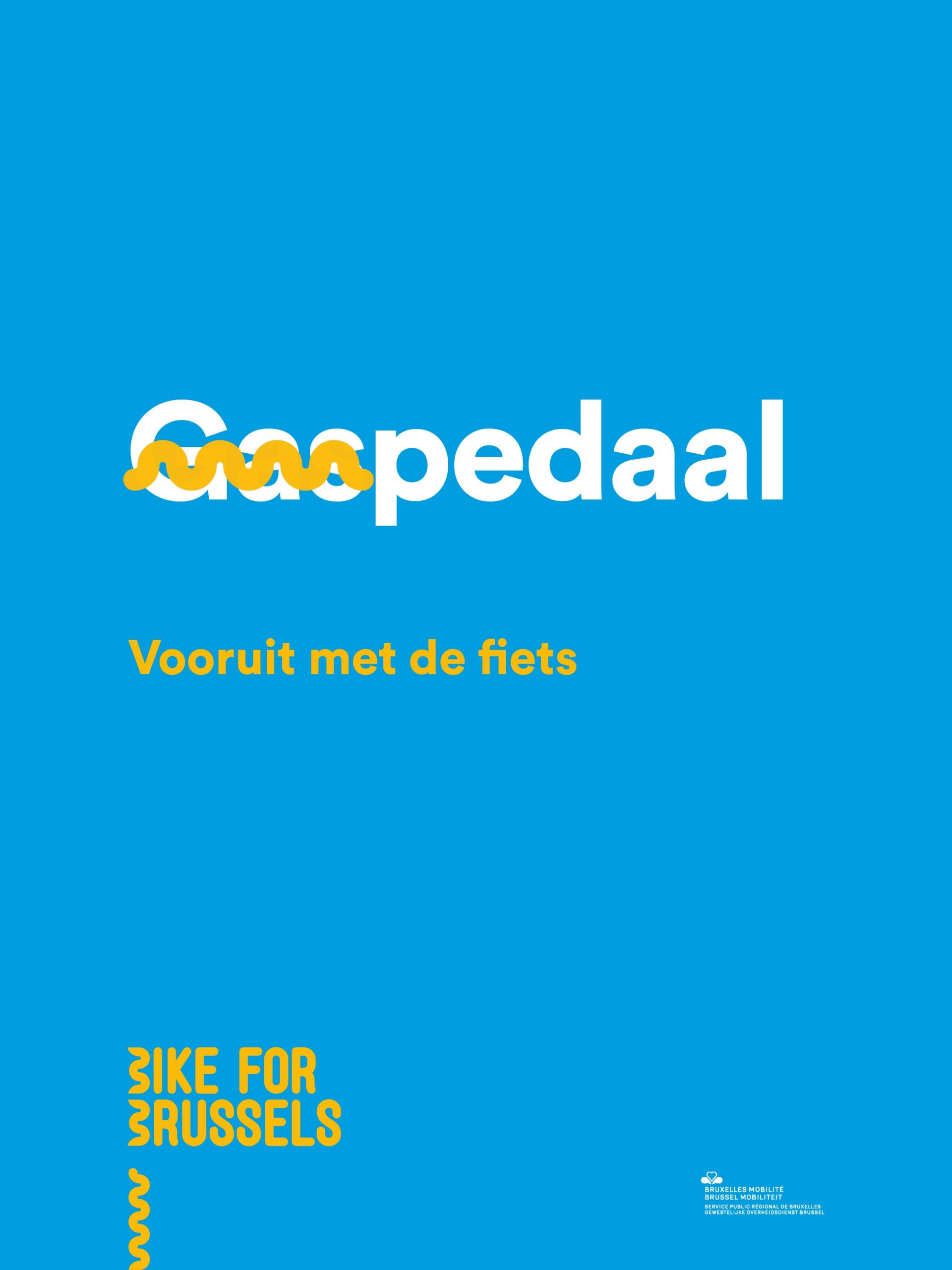 Bike For Brussels 3