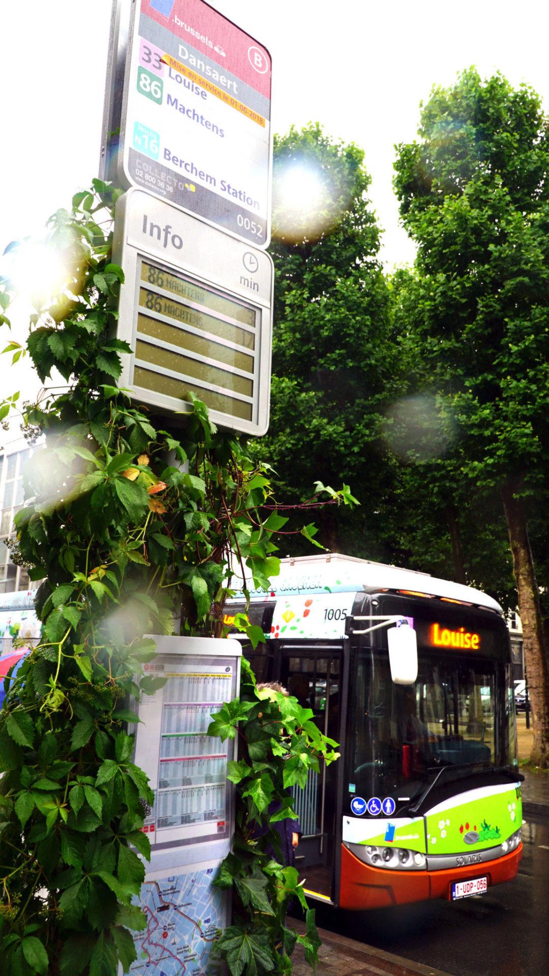 Elektrische Bus 6