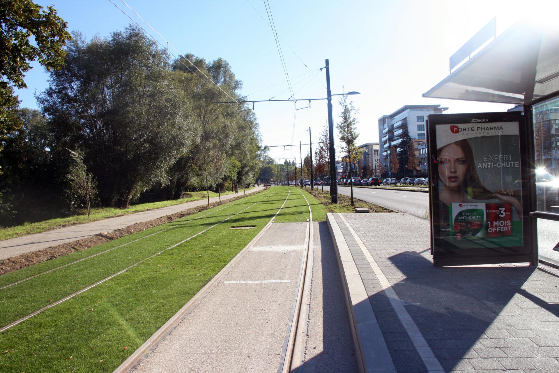 Tram 8 (13)