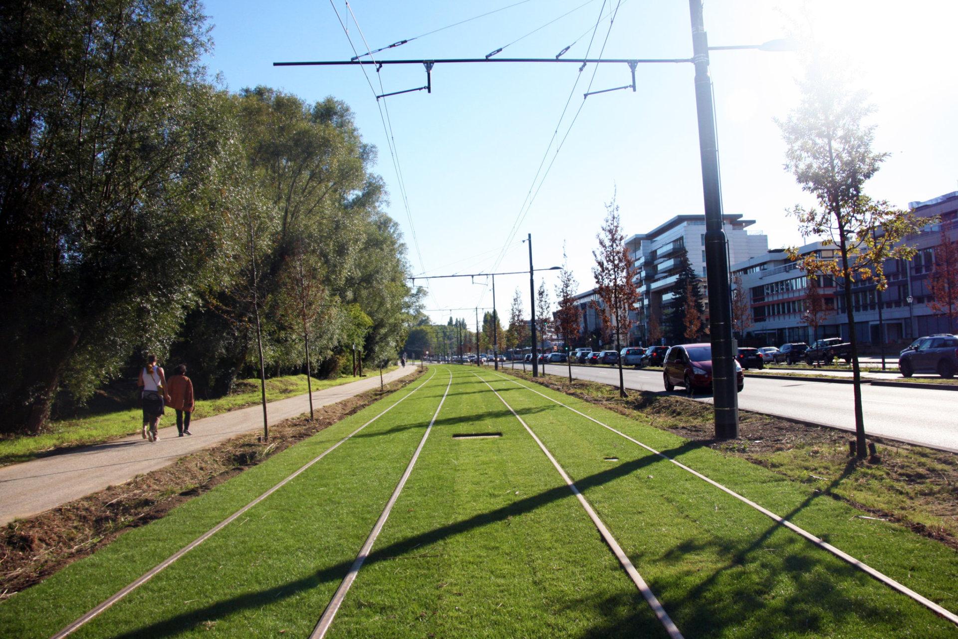 Tram 8 (14)